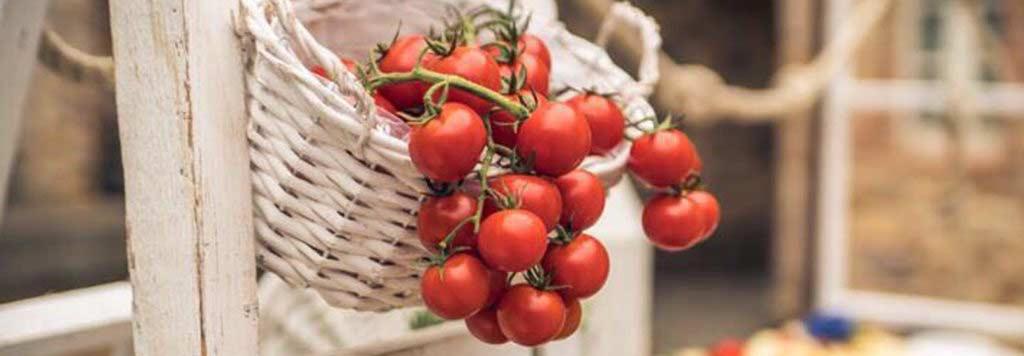 cestino bianco pomodori rossi